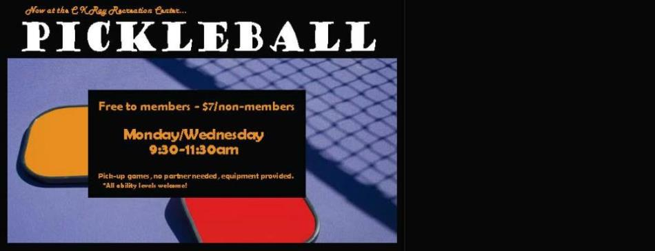 pickleball banner