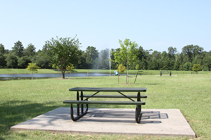 Carl Barton Jr. Park